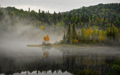 白い霧の中で、ドス黒い陰謀が蠢く 松本清張『白い闇』